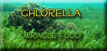 "Bottom of a lake with caption ""Chlorella Miracle food"""
