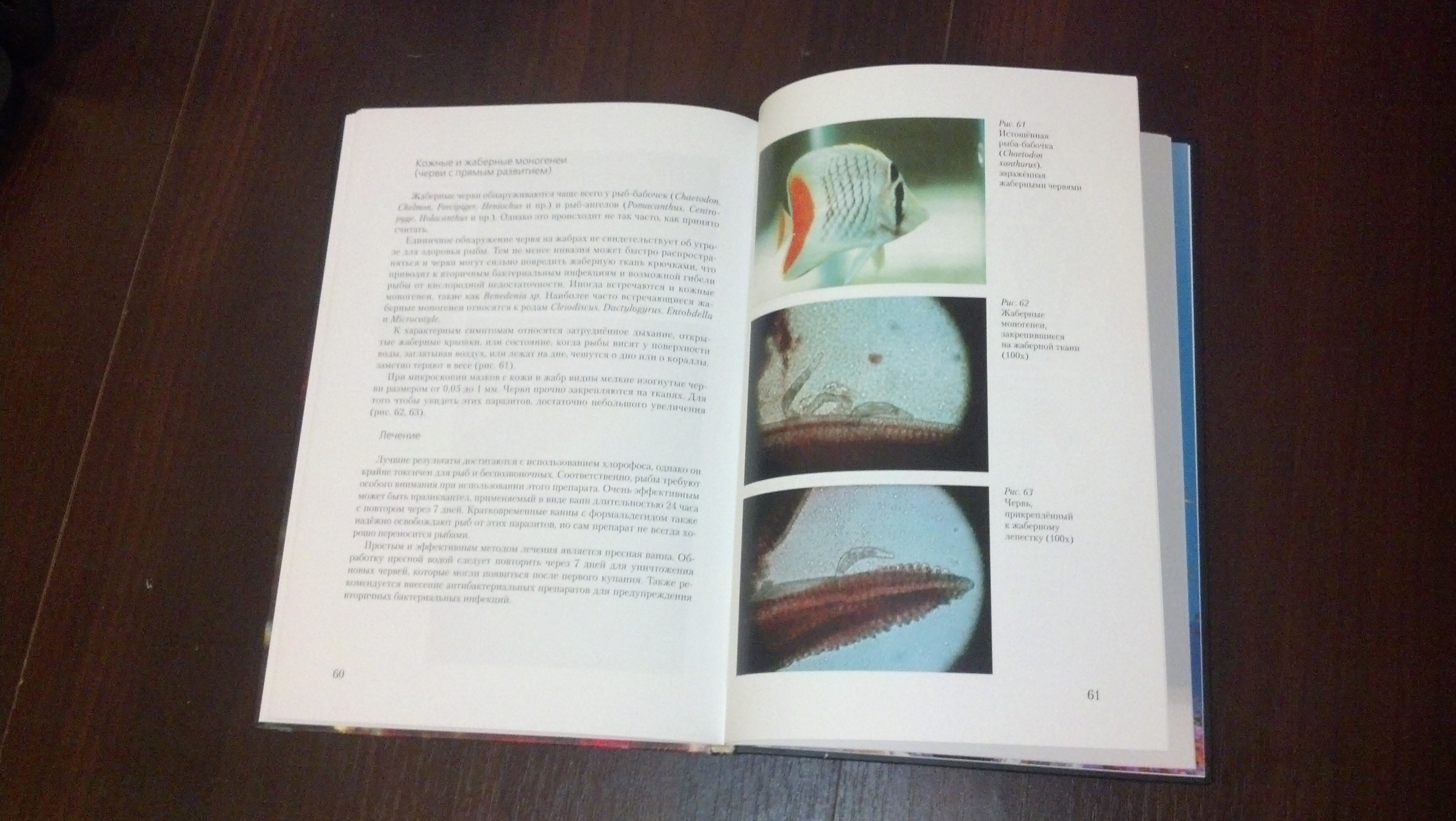 Russian book The Practical guide to fish diseases opened on page 61